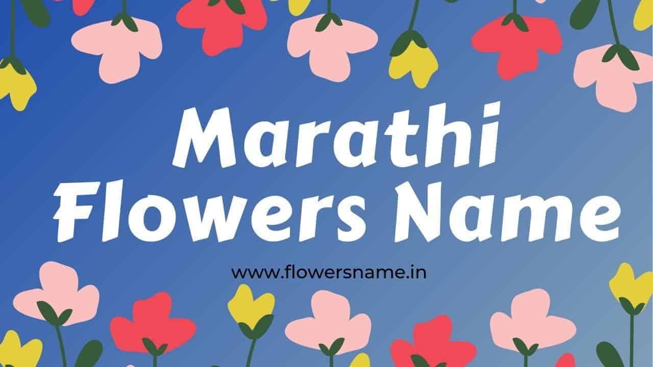 Flowers Name in Marathi